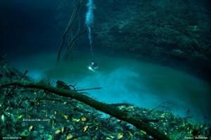 セノーテ・アンジェリタの水中写真 3