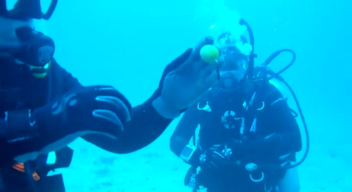 スキューバダイビング中に海の中で生卵を割った動画