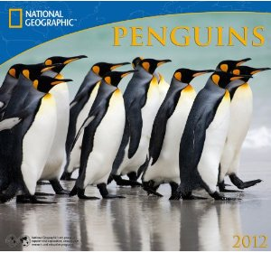 National Geographic Penguins 2012 Calendar