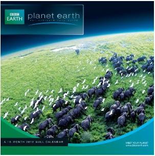 Planet Earth 2012 Calendar