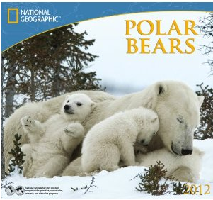 Polar Bears - National Geographic 2012 Calendar