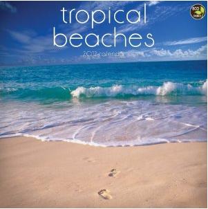 Tropical Beaches 2012 Calendar