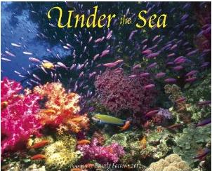Under the Sea 2012 Calendar