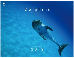 Dolphins(ドルフィン) カレンダー 2012