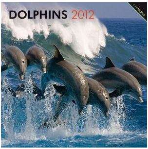 Dolphins 2012 Calendar
