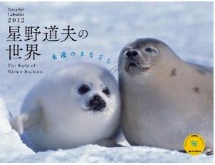 カレンダー2012 星野道夫の世界 永遠のまなざし (Yama-Kei Calendar2012)