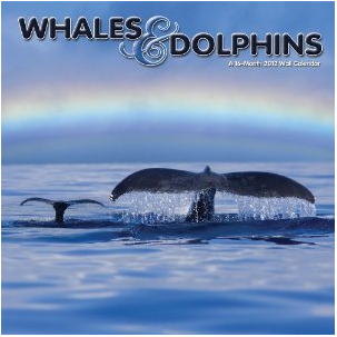 クジラ&イルカ 2012年カレンダー