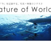 前の記事: 地球の「今」を記録する写真・映像コンテスト作品募集中