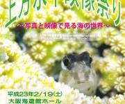 次の記事: 関西の一大イベント'11上方水中映像祭りが今年も開催