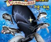 次の記事: 「伝説のクジラキングを追え!」山口県・萩博物館で開催中