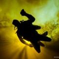 divephotoguide_rainbow diver