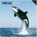 Orcas, Killer Whales 2012 Calendar