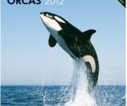 次の記事: 海外版・2012年の美しい海&水中写真のカレンダー全15作品