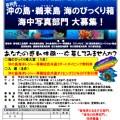 高知県の沖の島・鵜来島で水中写真フォトコンテスト開催