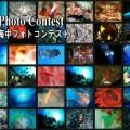第20回串本海中フォトコンテスト