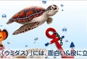 前の記事: 面白い&役に立つ海のブログを集めた新コーナー「Umidas」