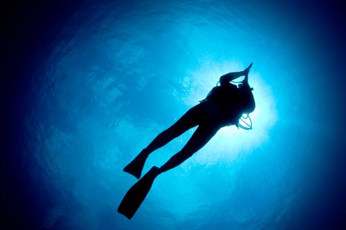 ダイビングインストラクターとスキルと恋愛の相関関係