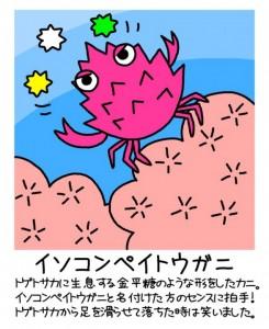 ふくちゃんのイラスト(イソコペイトウガニ)