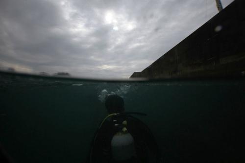 次の記事: 金環日食の水中撮影、結果やいかに!?