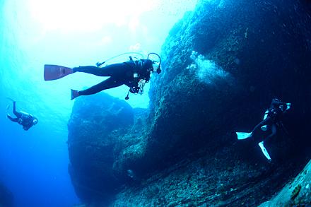 西表島オガンのダイビング