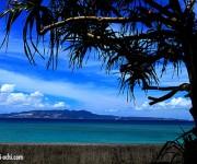 前の記事: 沖縄の減圧症患者の来院が夜に多い理由とは?