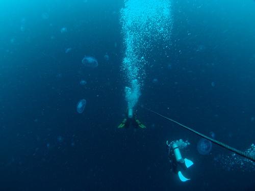 海南島ダイビング