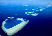 モルディブ、リリィビーチの海