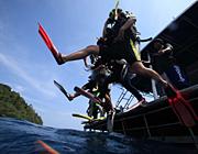 アンダマン海~タオ島を潜り倒す