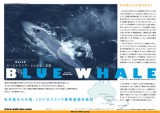 200505_bluewhale_cover