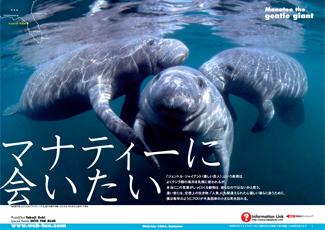 200505_manatee_cover