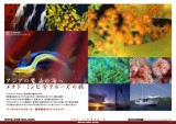 200505_menado_kagii_cover