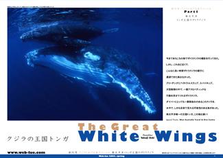 200505_tonga_cover