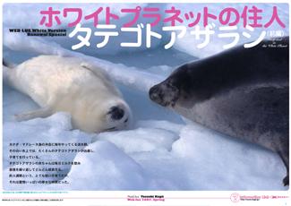 200707_canada_1_cover