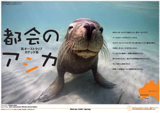 200707_perth_carnac_cover
