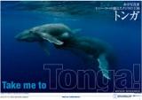 200808_tonga_cover