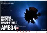 200909_ambon_cover