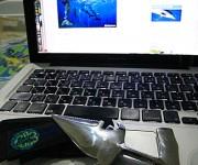 前の記事: ハンマーヘッドシャーク・ダイバーナイフ、ocean+αでも販