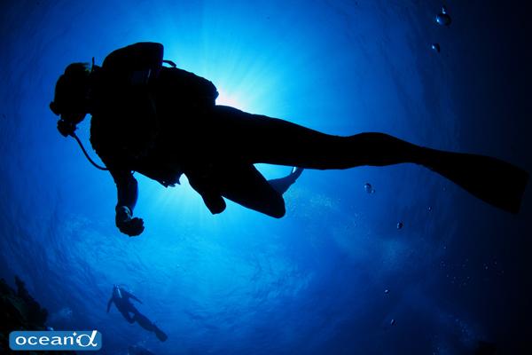 潜水事故訴訟でダイビング指導団体を訴える言い分は認められるのか