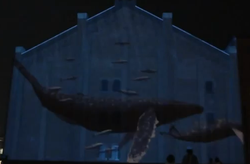 実物大のクジラが泳ぐライトアニマル