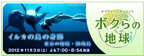 「イルカの島の奇跡 東京の秘境・御蔵島」BS朝日