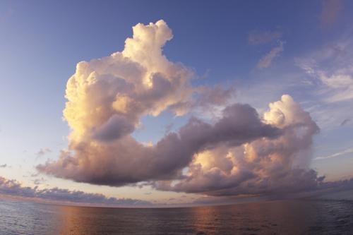 ローシン&コ・クラクルーズ、日の出の雲