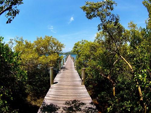 パプアニューギニア、ロロアタ・アイランド・リゾート