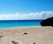 次の記事: 砂浜に残された謎の足跡!?ビーチ散策のすすめ