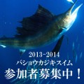 sailfish_tour_20130128_thumb