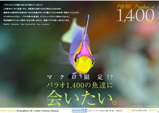 201302_palau_1400macro_325_230px