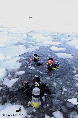 北海道知床・流氷ダイビング(撮影:越智隆治)