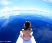 次の記事: 鏡のように穏やかで美しい海面!セブ島の海にベタ凪が多い理由と