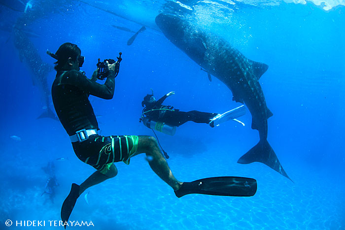 【募集】水中カメラマン・越智隆治と行くセブフォトツアーを2015年5月に開催!