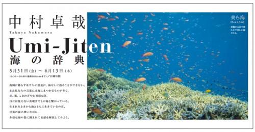 水中カメラマン・中村卓哉写真展「Umi -Jiten 海の辞典」