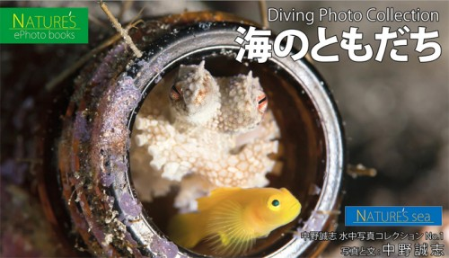 中野誠志「海のともだち~癒しのダイビング写真集~」